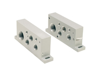 Isys ISO H1 Series End Plate Kits - BSPP