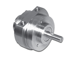 Stainless Steel Air Motors